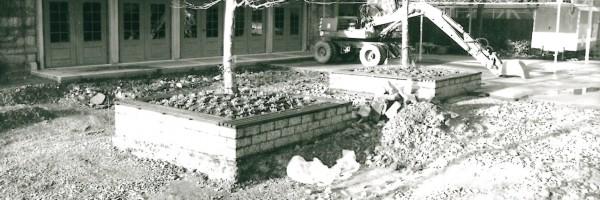 Rénovation des terrasses, 1993