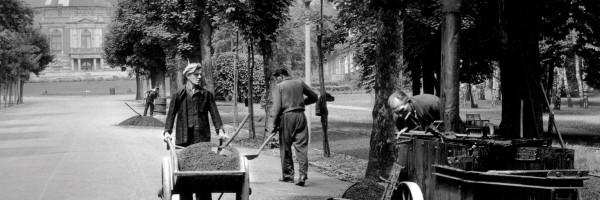 La Colline verte en 1951